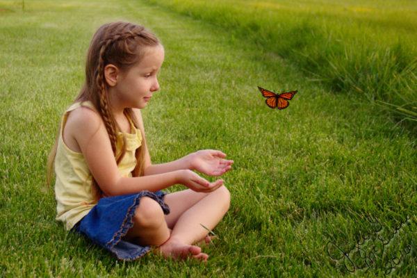 Releasing Butterfly