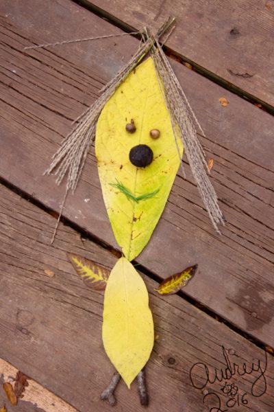 audrey-leaf